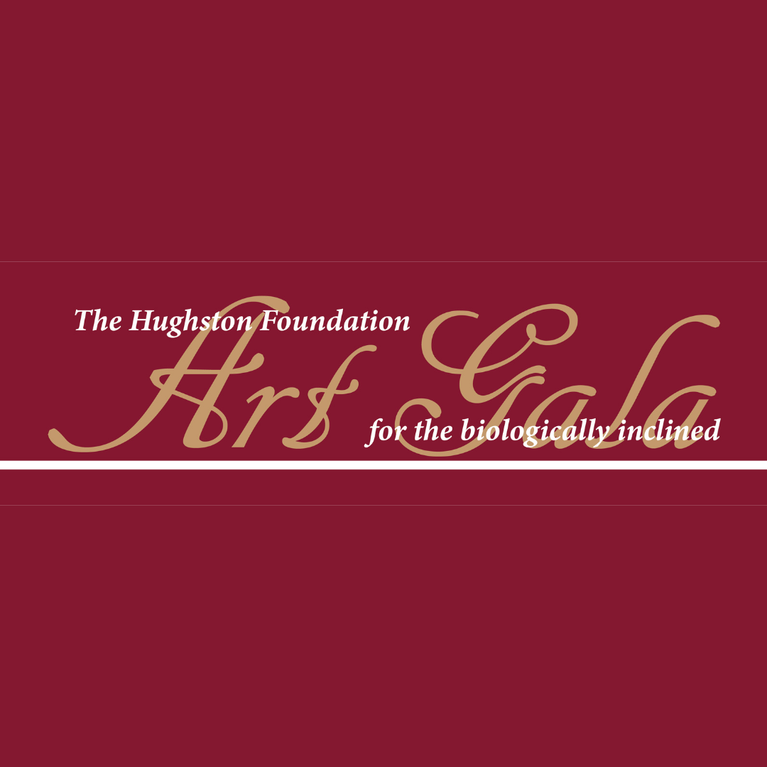 Second Annual Art Gala Competition & Exhibtion